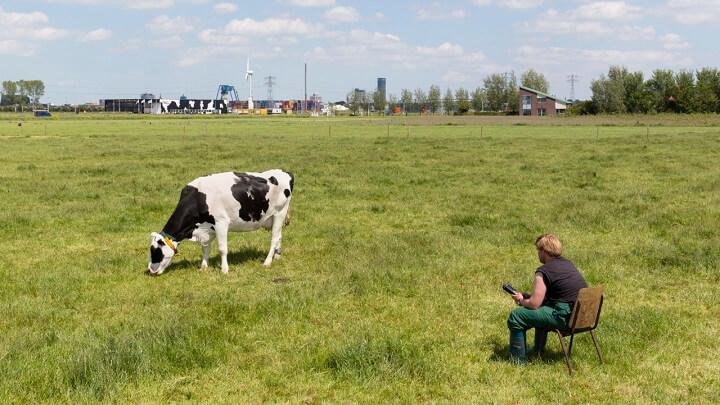 Los límites de velocidad se reducen en Holanda